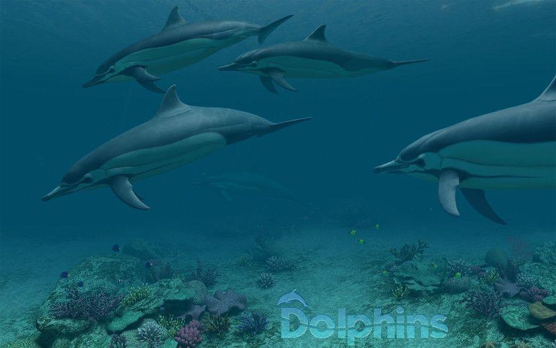 Immergetevi nel magico mondo dei delfini con Dolphins 3D su Mac!
