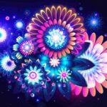 wallpaper fiori luce