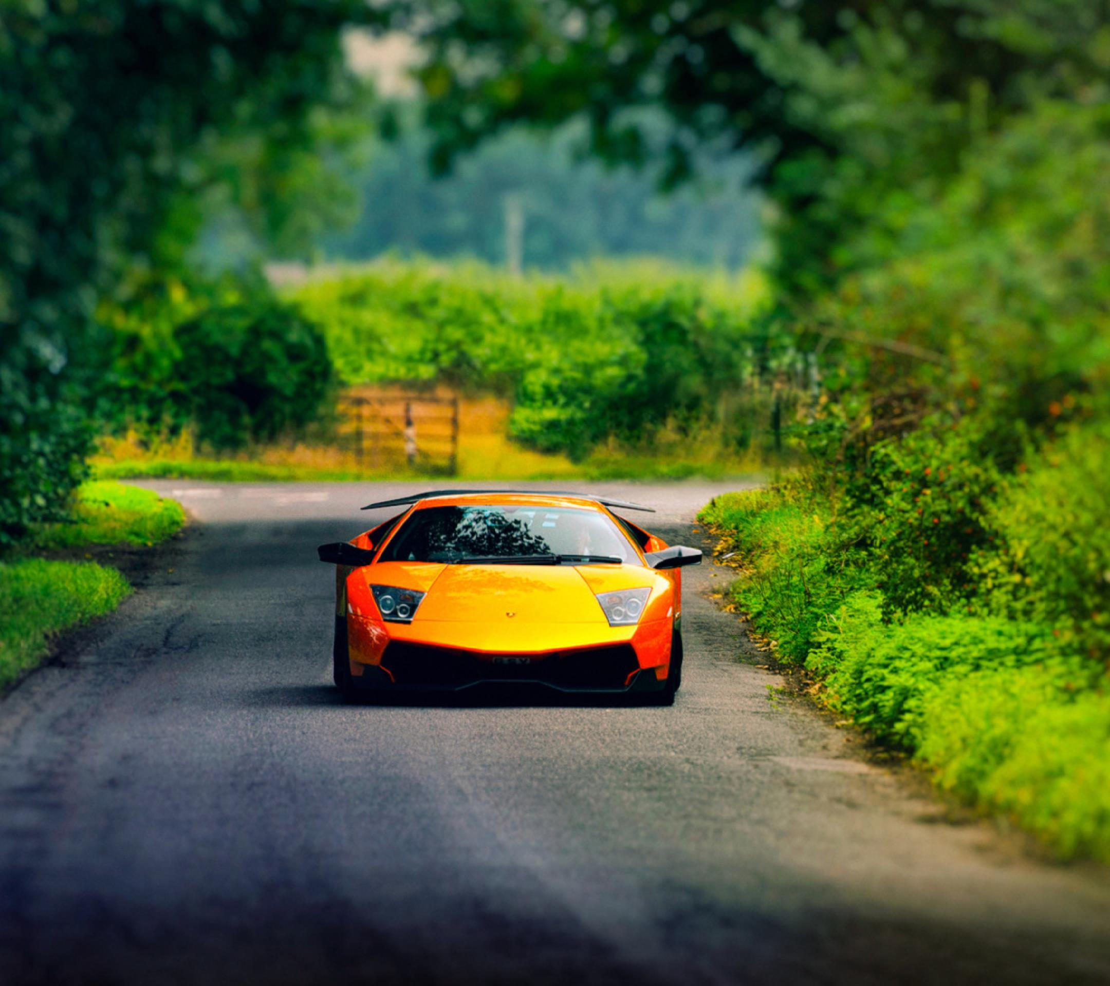 Wallpaper lamborghini orange