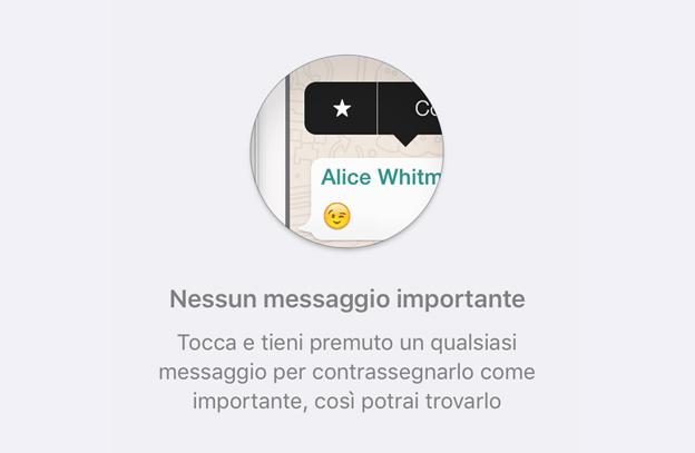 WhatsApp_messaggi_importanti