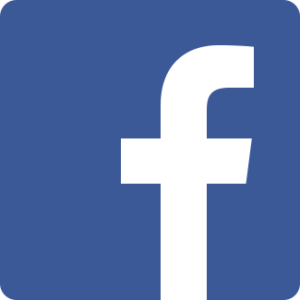 facebook introduce crash volontari