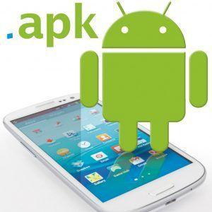 L'installazione del Play Store proposta da questa guida consiste nel download dello Store di Google sotto forma di apk.