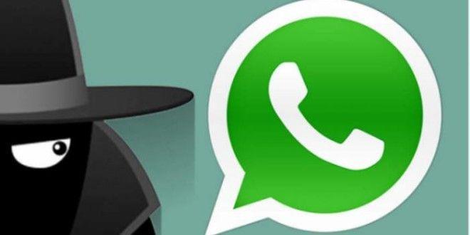 truffe WhatsApp
