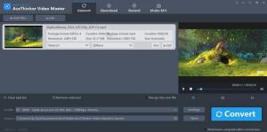 acethinker video master - converti -2