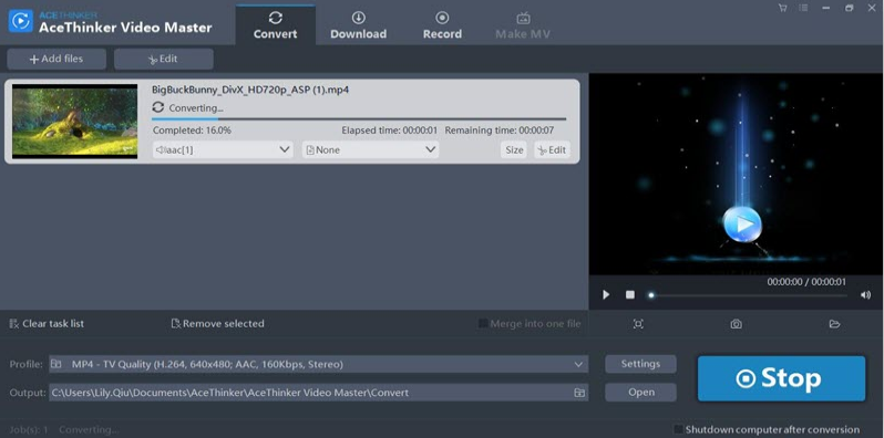 acethinker video master - converti -3