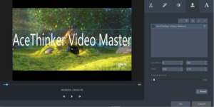 acethinker video master - modifica -4