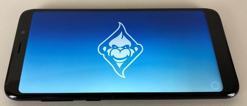 Meiigoo S8 schermo