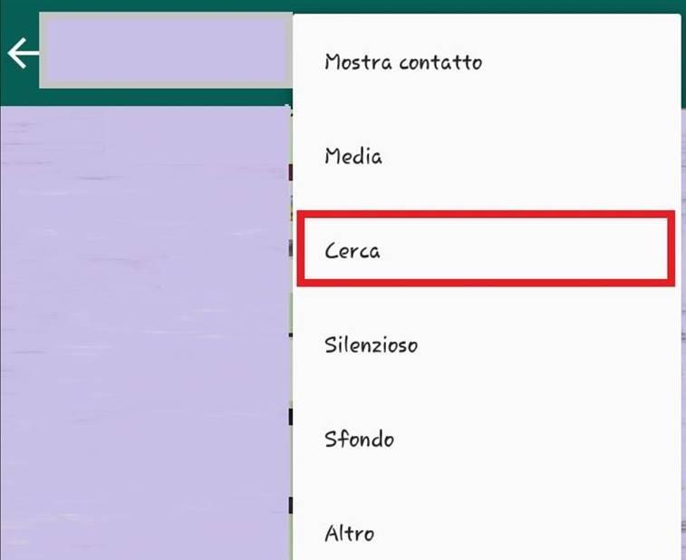 WhatsApp funzione Cerca