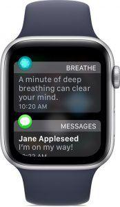 come nascondere le notifiche su apple watch