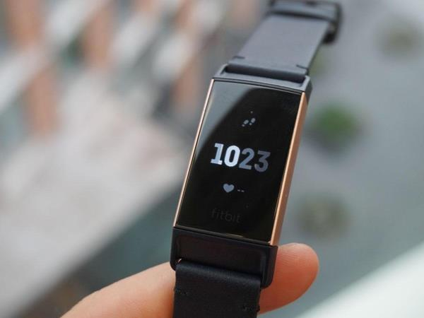 Migliore Fitbit: Fitbit Charge 3