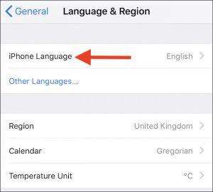 lingua iphone