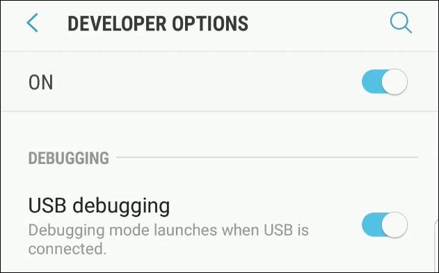 La pagina da cui attivare Debug USB