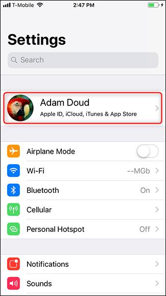 Il proprio profilo nelle impostazioni iPhone