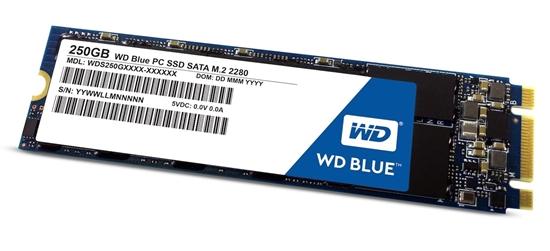 L'SSD di Western Digital