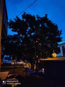 foto scattate da redmi note 9s - modalità notte mosso
