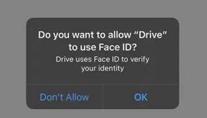 app google drive iOS